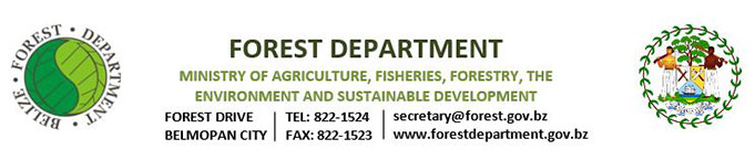 ForestDepartment